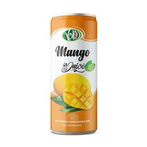 best price 250ml mango fruit juice supplier private label